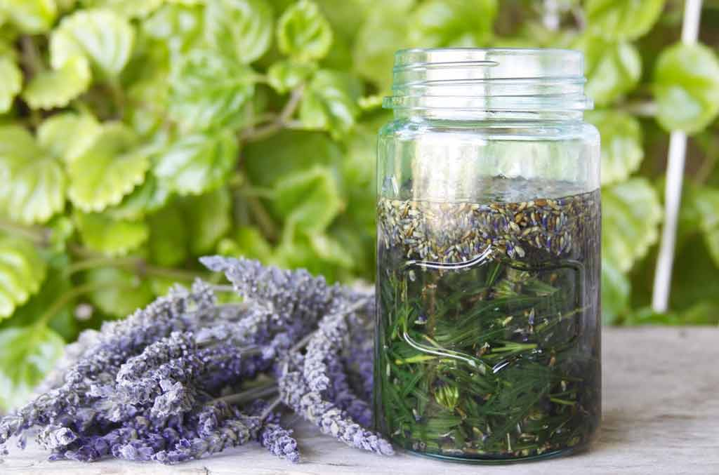 lavender-coconut-oil